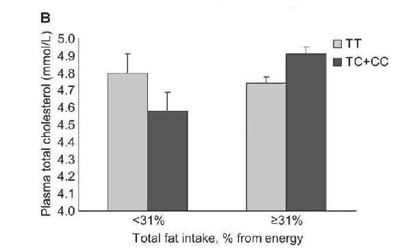 colesterol y dietas
